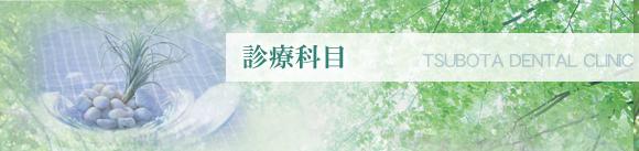 坪田歯科医院 診療科目